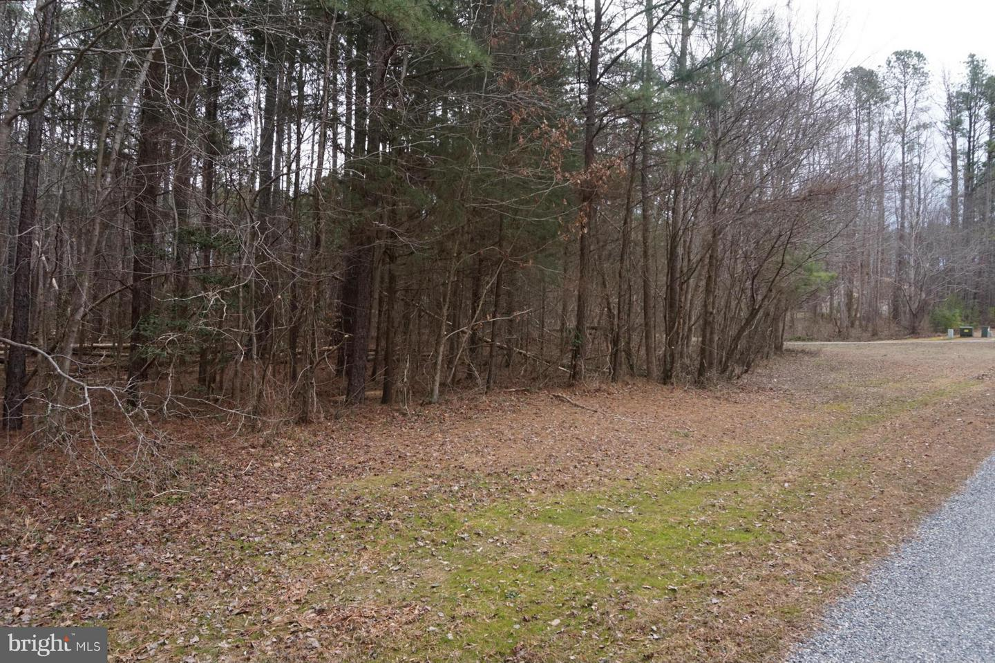 Photo of home for sale at 11319 Piney Forest Drive, Bumpass VA