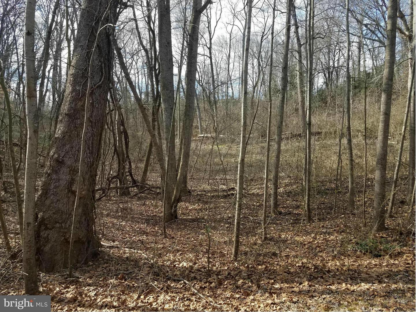 Land for Sale at Lot 27 Greenpoint Landing Mount Holly, Virginia 22524 United States