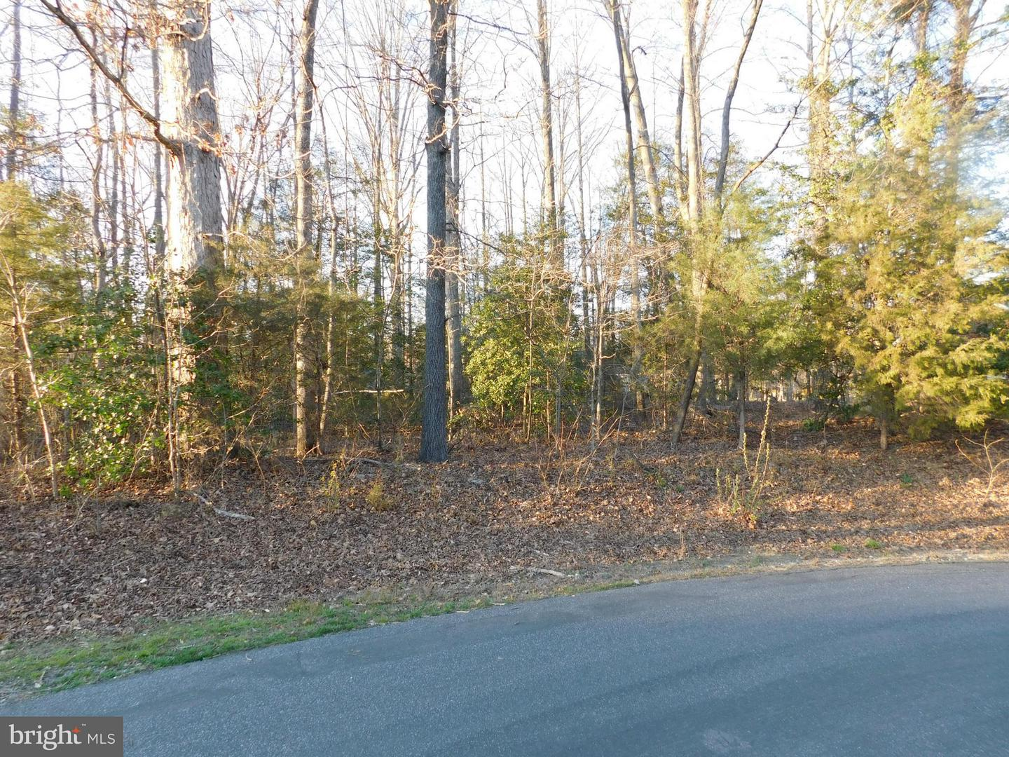Additional photo for property listing at Harding Dr  Bowling Green, Virginia 22427 United States