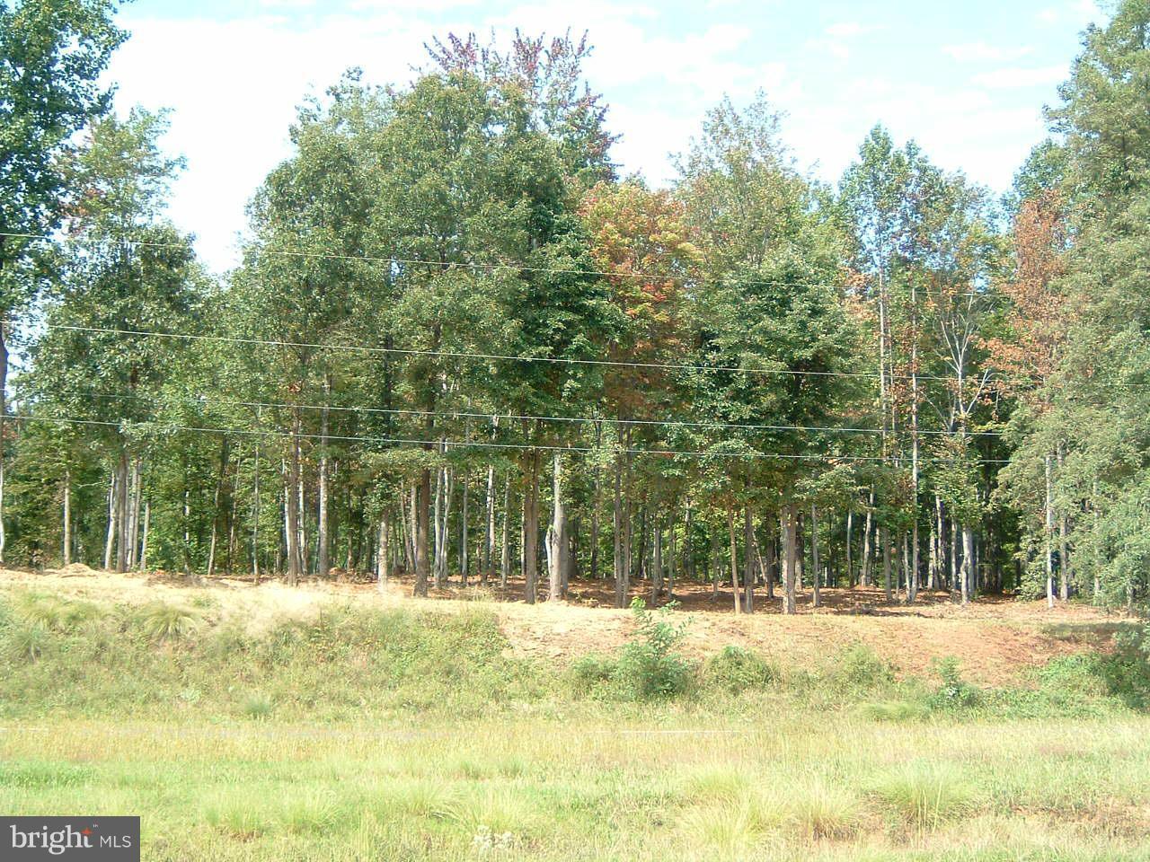 Land for Sale at Seminole Trl Madison, Virginia 22727 United States