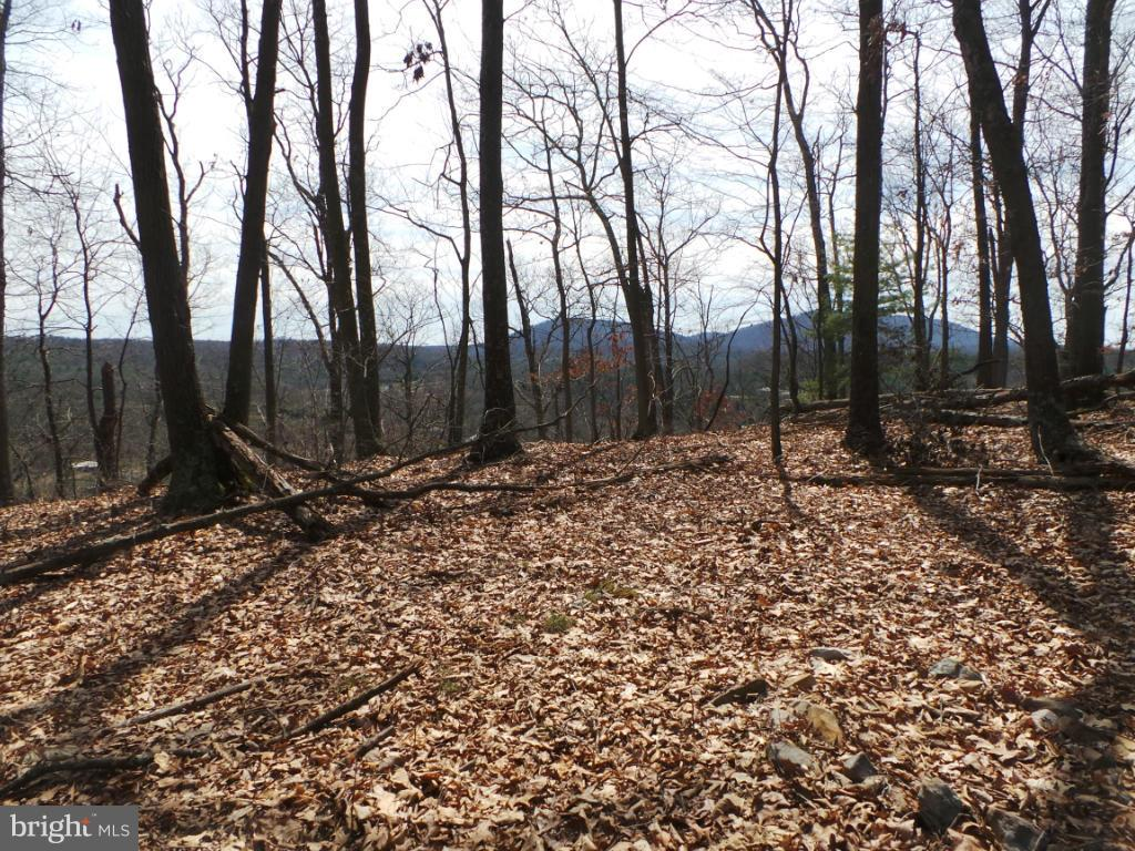 Land for Sale at 26 Basswood Circle Berkeley Springs, West Virginia 25411 United States