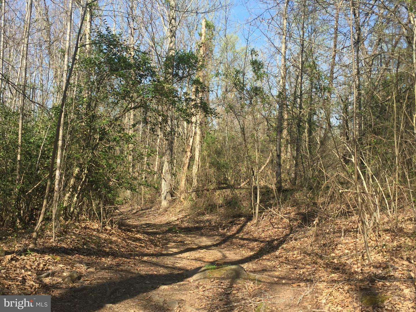 Land for Sale at Good Hope Church Rd Aroda, Virginia 22709 United States