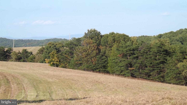 Push Root Road, Burlington, West Virginia 26710 | TTR Sotheby\'s ...