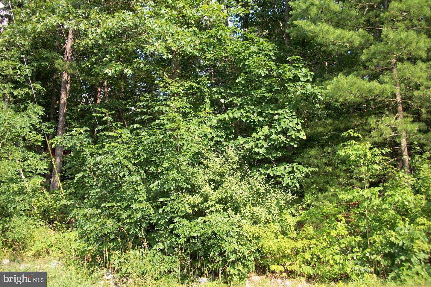 Photo of home for sale at 0 Lake Shore Dr Lot 26, Cross Junction VA