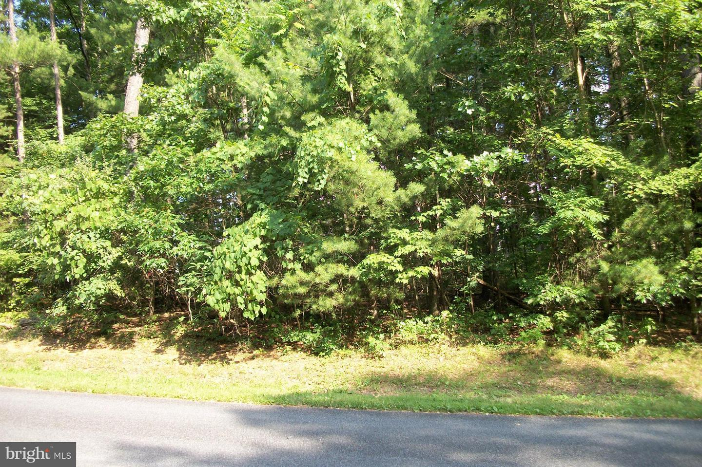 Land for Sale at 145 Lake Holiday Rd Cross Junction, Virginia 22625 United States
