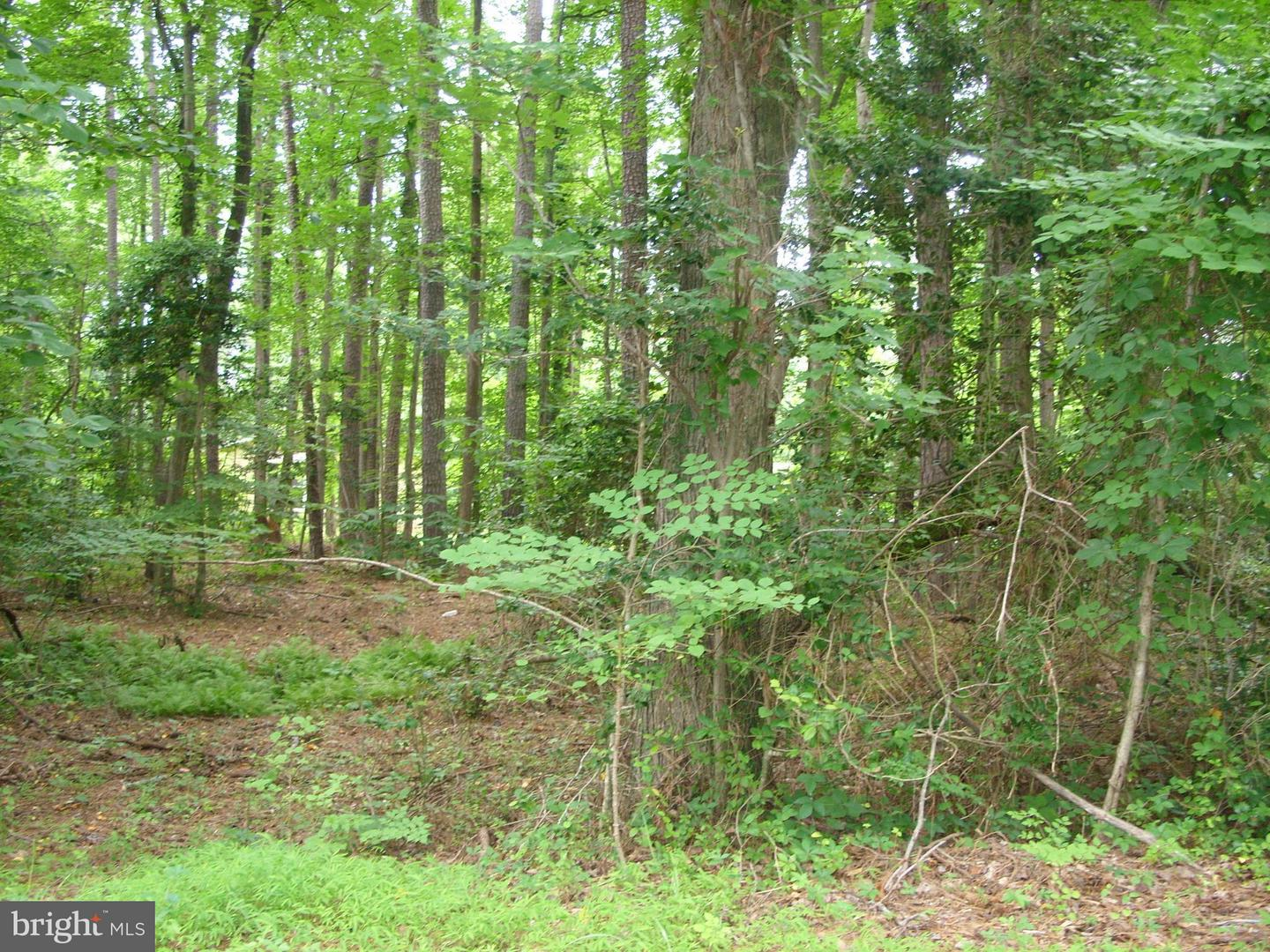 Photo of home for sale at 857 Plains Road, Lusby MD
