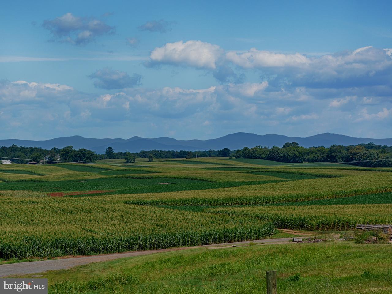 Land for Sale at 227 Blue Ridge Tpke Somerset, Virginia 22972 United States