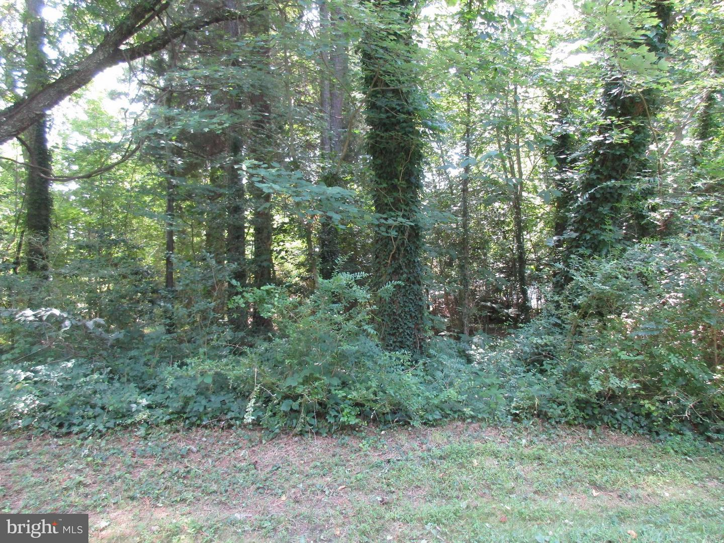 Photo of home for sale at 335 Gray Drive, Lusby MD