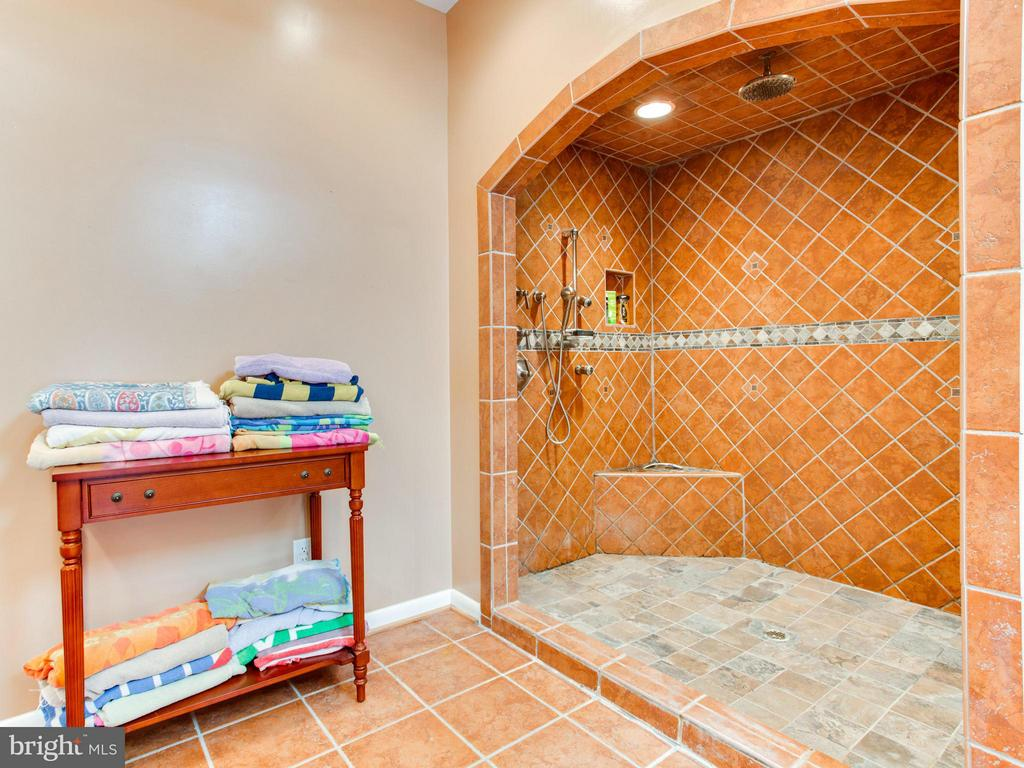 Bath (Master) - 3815 DELASHMUTT DR, HAYMARKET