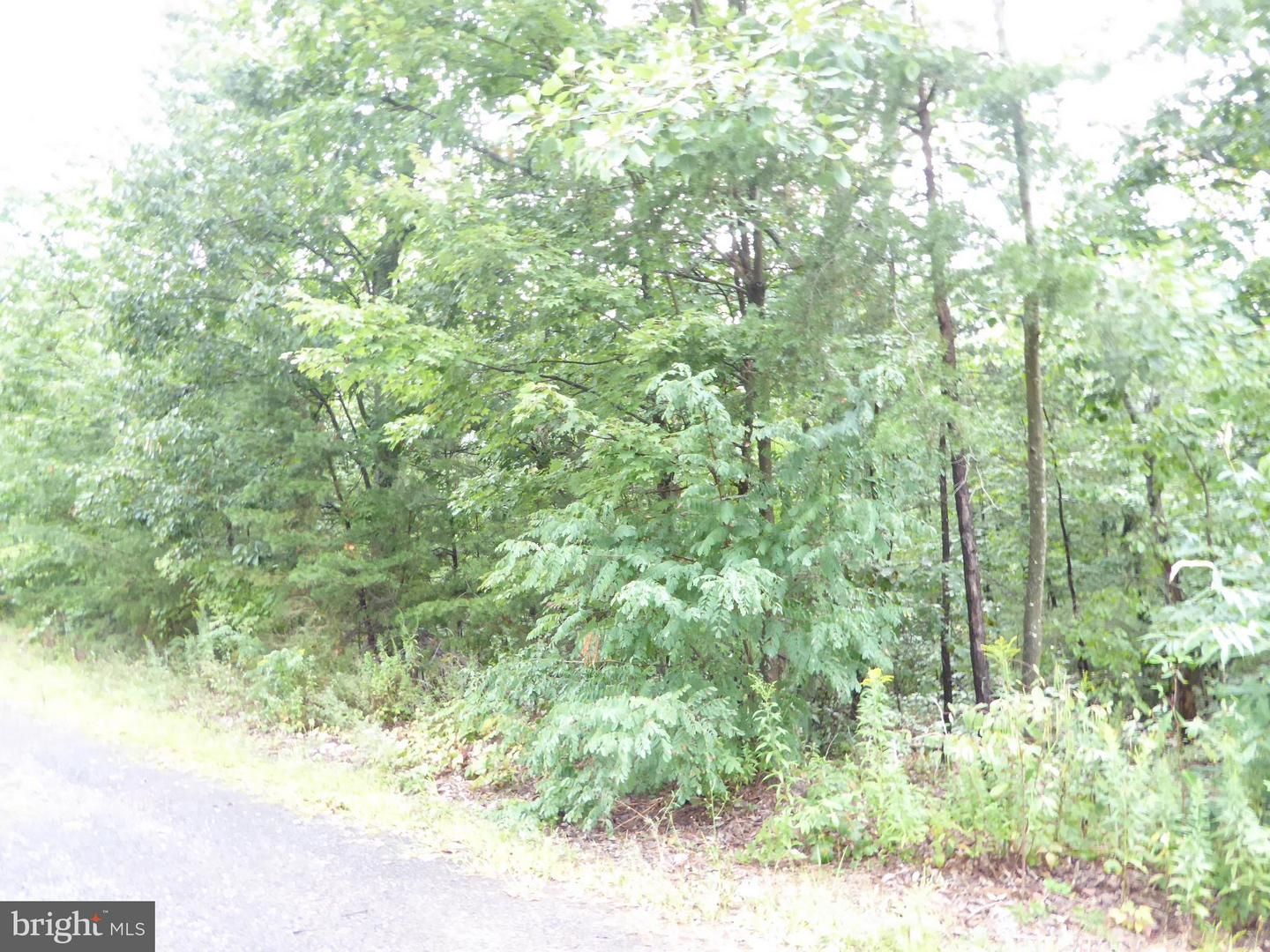 Land for Sale at 7 Shady Lane/Kaitlyn Way Augusta, West Virginia 26704 United States