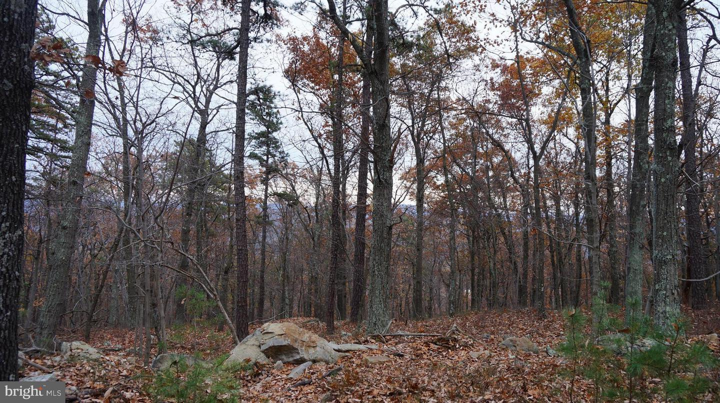 Land for Sale at Breakeven Rd Berkeley Springs, West Virginia 25411 United States