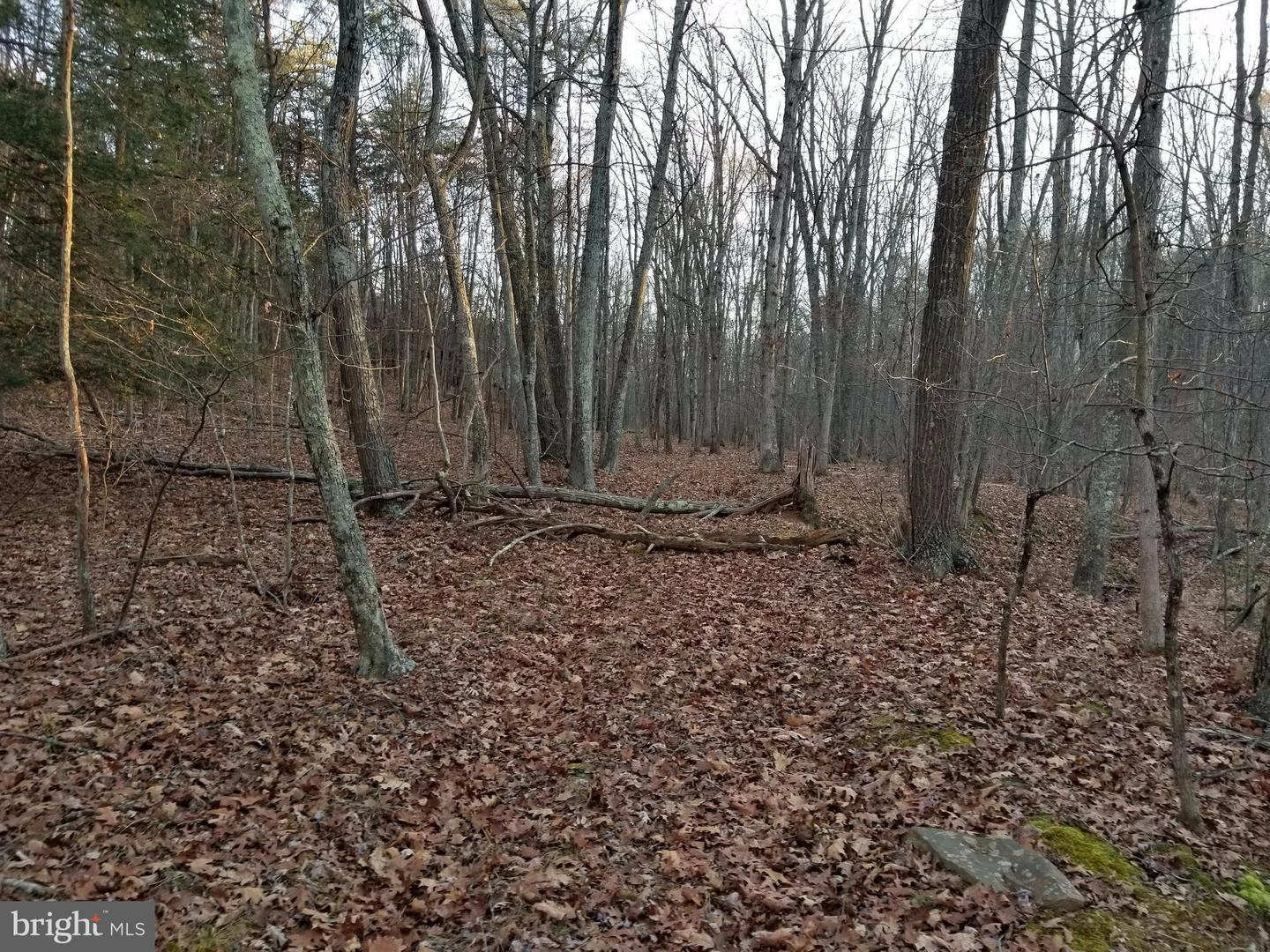 Land for Sale at Clear Spring Ln Berkeley Springs, West Virginia 25411 United States