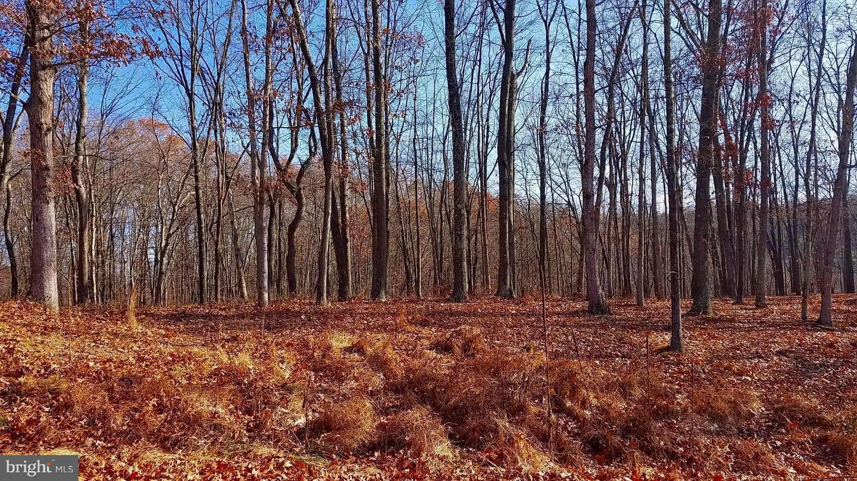 Land for Sale at 0 Shearer Dr Berkeley Springs, West Virginia 25411 United States