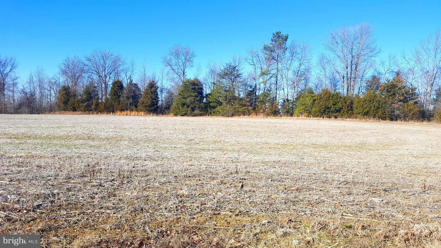 Land for Sale at Budds Creek Rd Charlotte Hall, Maryland 20622 United States