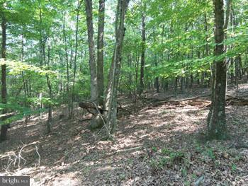 Land for Sale at Slim Chance Berkeley Springs, West Virginia 25411 United States
