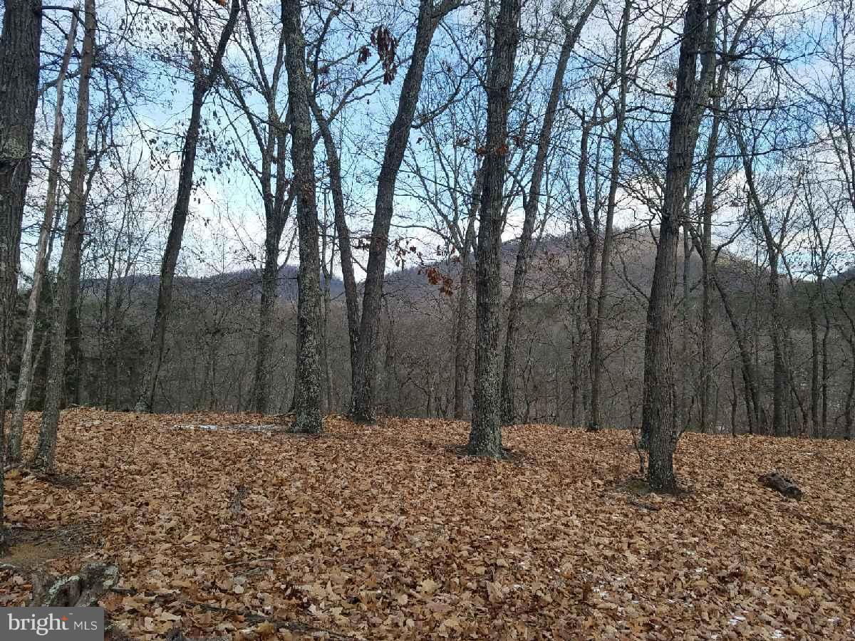 Land for Sale at Davy Ridge Purgitsville, West Virginia 26852 United States