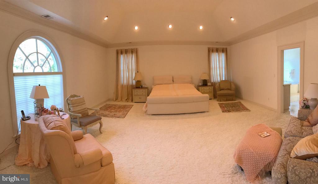 Bedroom (Master) - 1289 BALLANTRAE FARM DR, MCLEAN