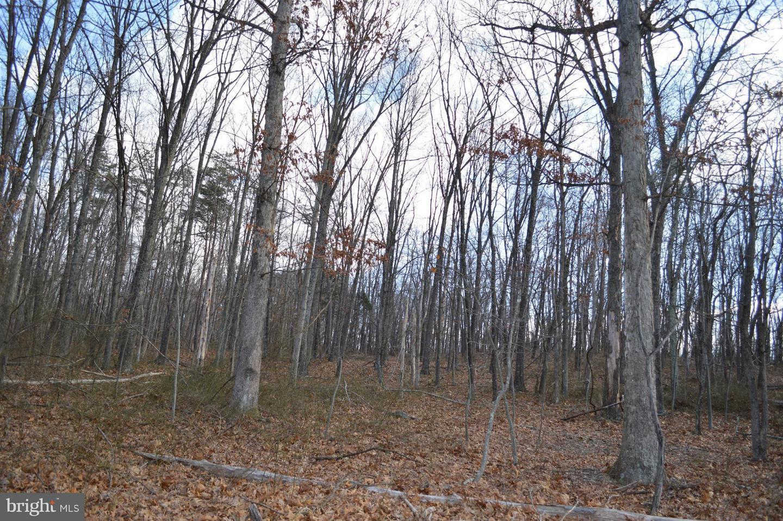 Land for Sale at Greenwood Dr Berkeley Springs, West Virginia 25411 United States
