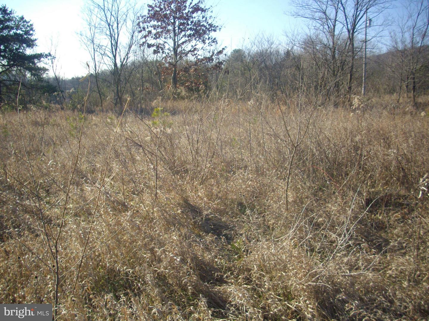 Land for Sale at 445 Longview McConnellsburg, Pennsylvania 17233 United States