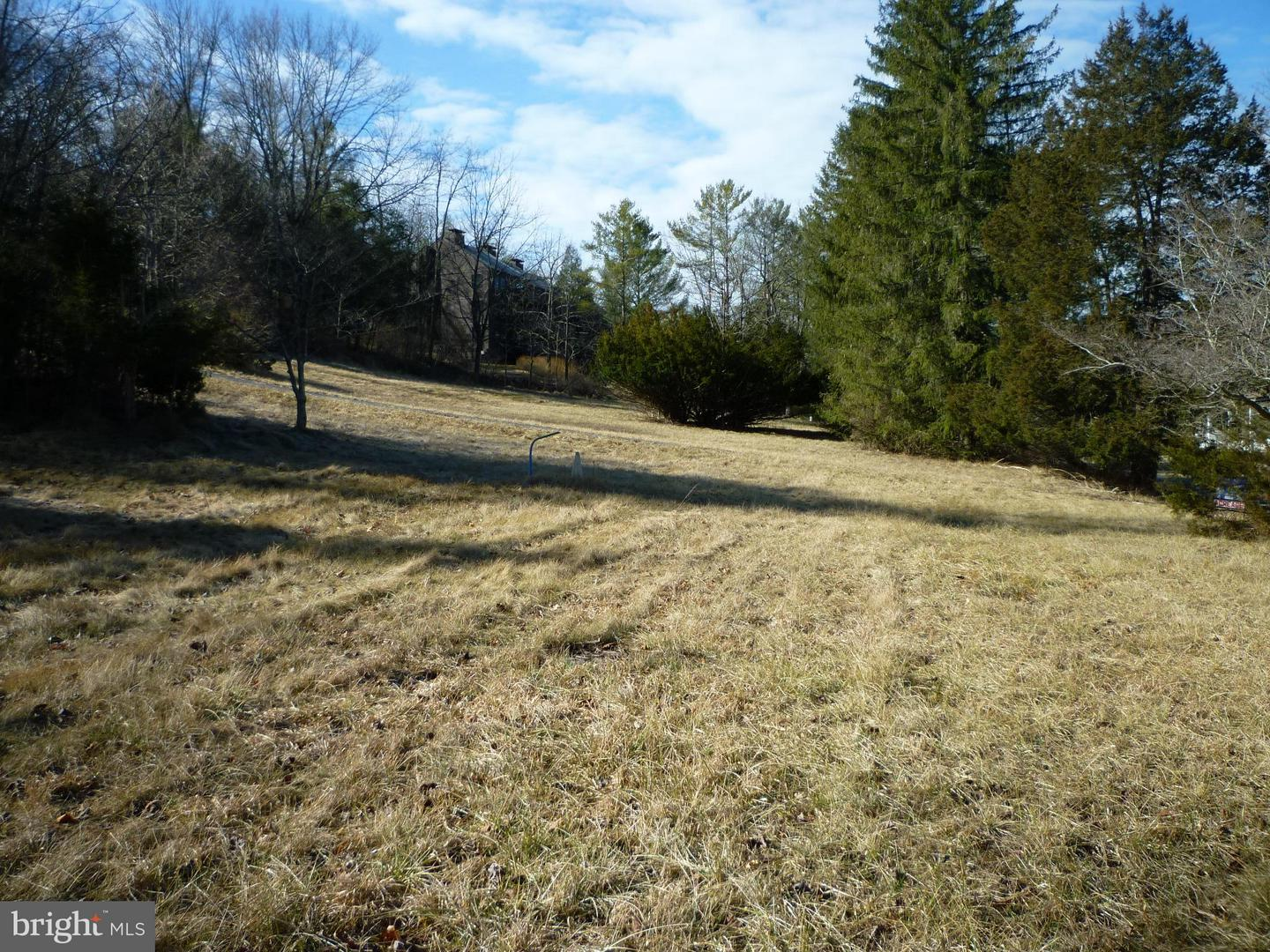 Photo of home for sale at 1378 Orkney, Basye VA