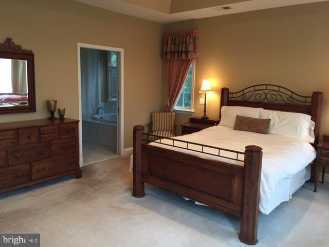 Bedroom (Master) - 11372 JACKRABBIT CT, STERLING