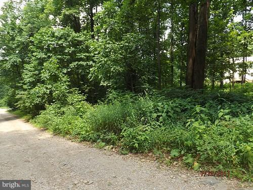 Land for Sale at 0 Apache Trail Chester Gap, Virginia 22623 United States