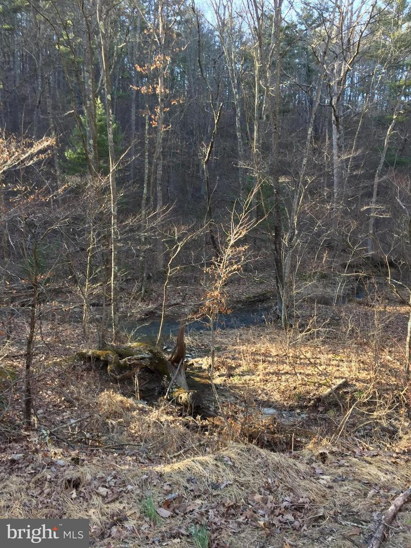Land for Sale at 22257 Black Hollow Rd Three Springs, Pennsylvania 17264 United States