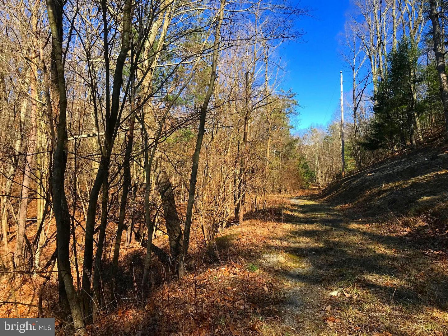 Land for Sale at Mccauley Dr Augusta, West Virginia 26704 United States