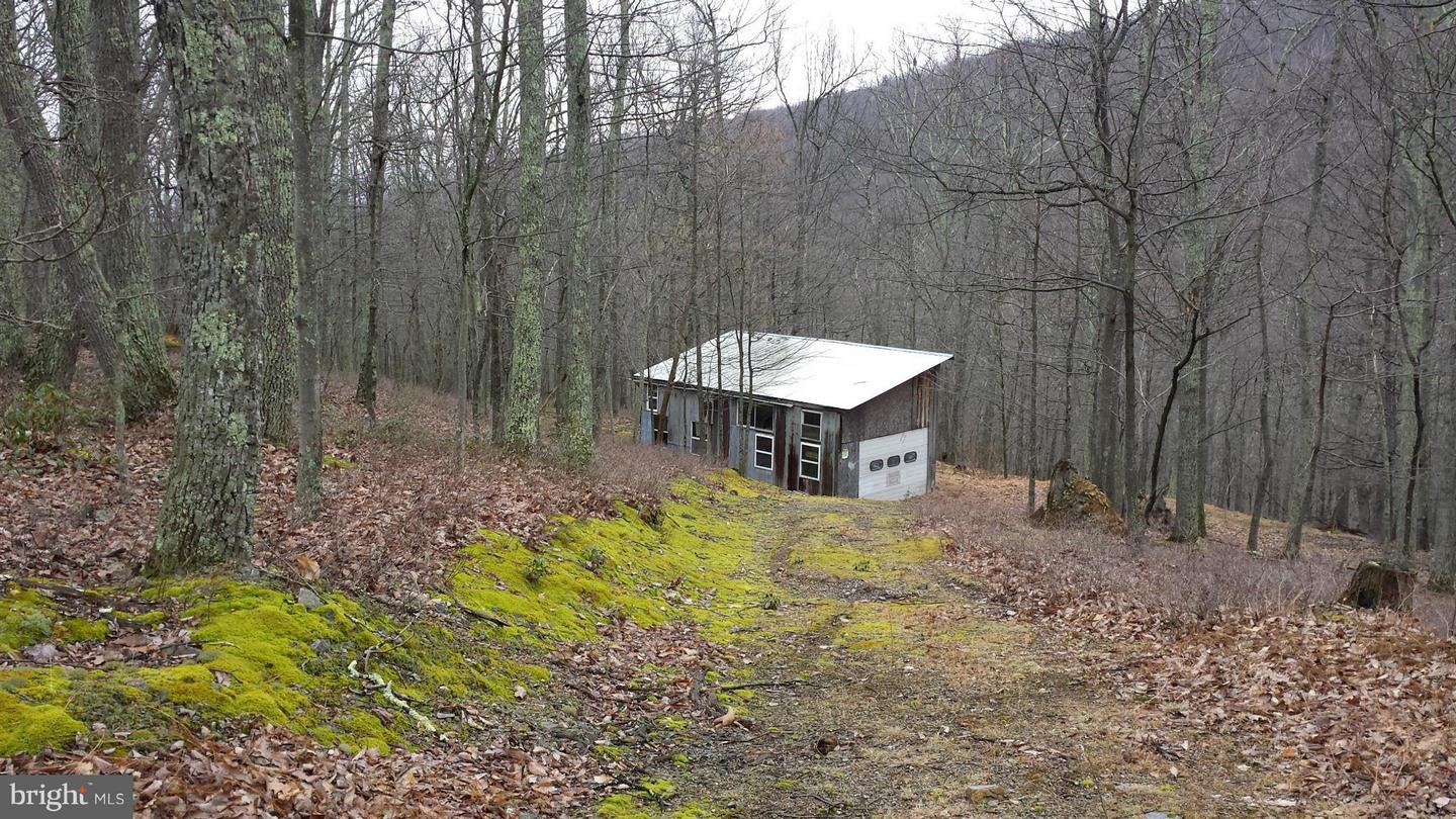 Land for Sale at 10 Off Route 220 High Knob Rd Old Fields, West Virginia 26845 United States