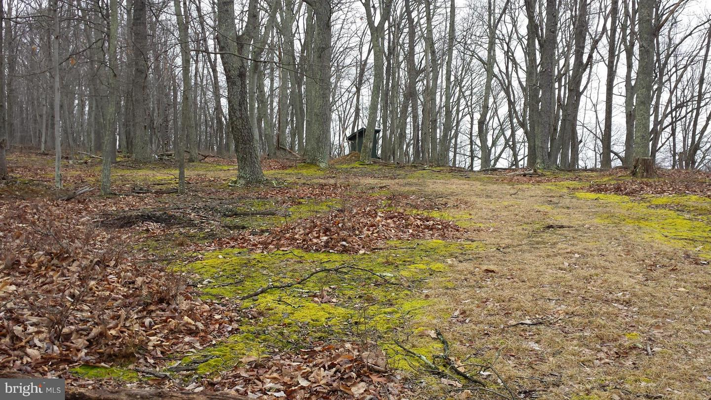 Land for Sale at 2 Off Route 220 High Knob Rd Old Fields, West Virginia 26845 United States