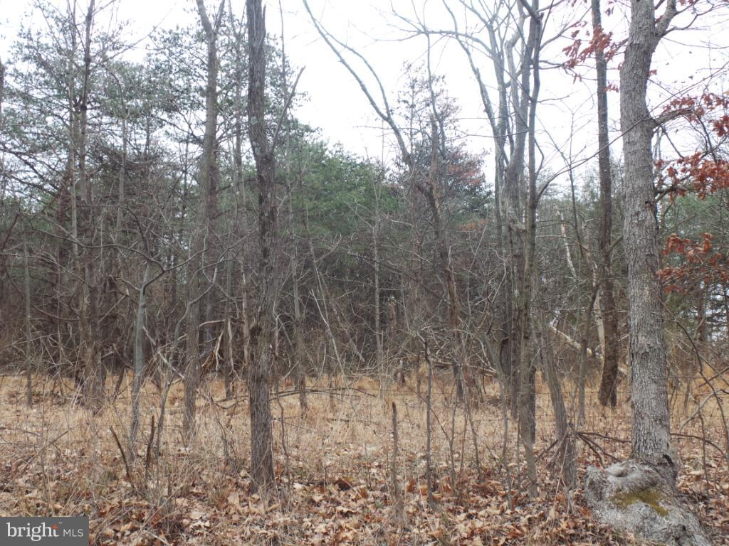 Land for Sale at 2 Timber Ridge Berkeley Springs, West Virginia 25411 United States