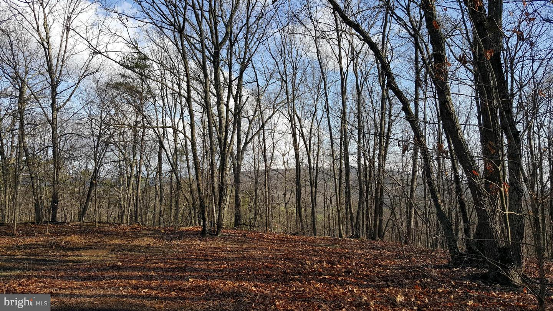 Land for Sale at John Wagner Rd Oldtown, Maryland 21555 United States