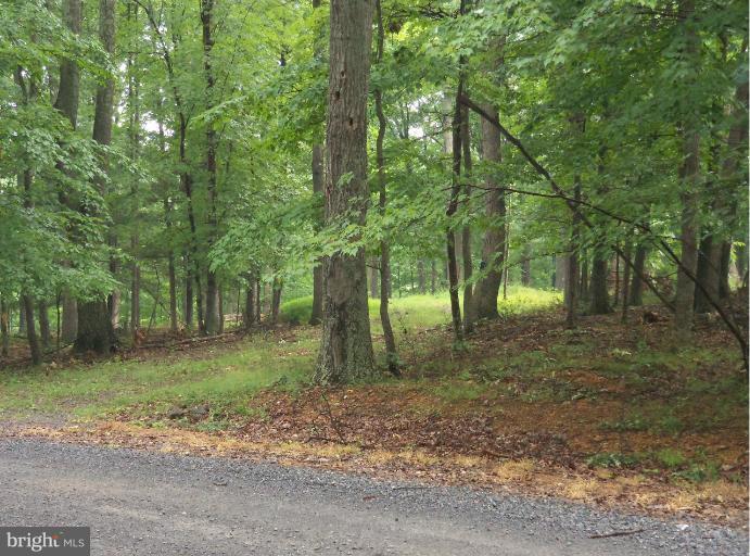 Land for Sale at Deerwood Trl Berkeley Springs, West Virginia 25411 United States