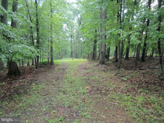 Land for Sale at Deerwood Dr Berkeley Springs, West Virginia 25411 United States