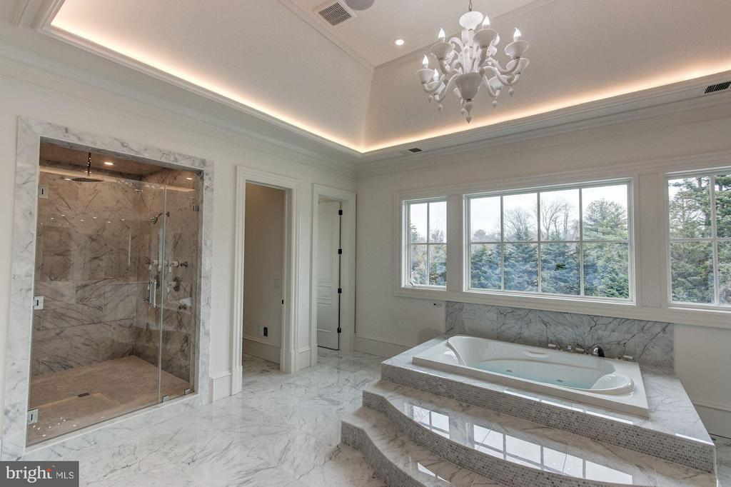 Bath (Master) - 1181 BALLANTRAE LN, MCLEAN