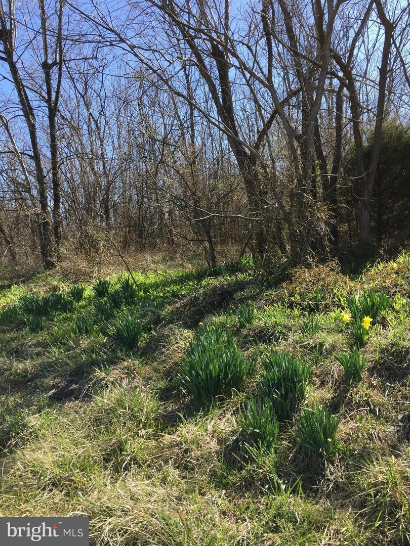 Land for Sale at Martinsburg/Winchester Pike Clear Brook, Virginia 22624 United States