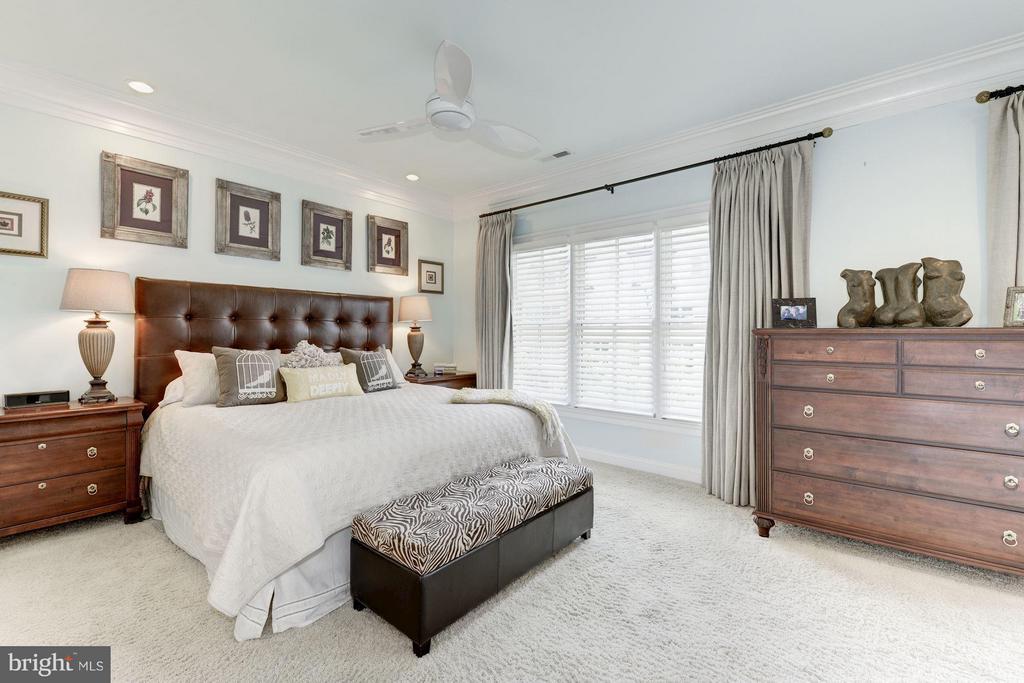 Bedroom (Master) - 10887 SYMPHONY PARK DR, NORTH BETHESDA