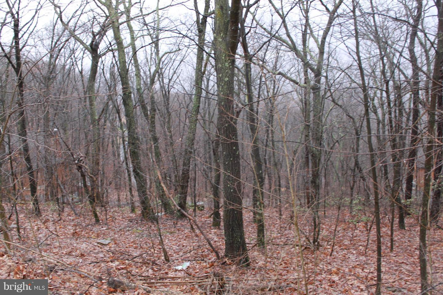 Land for Sale at 114lot Timberlake Drive James Creek, Pennsylvania 16657 United States