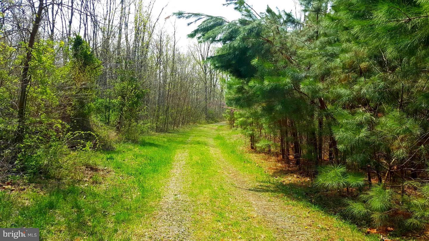 Land for Sale at Rainbow Way Front Royal, Virginia 22630 United States