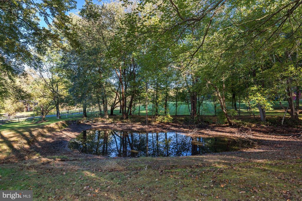 Pond - 11308 HUNTING HORSE DR, FAIRFAX STATION
