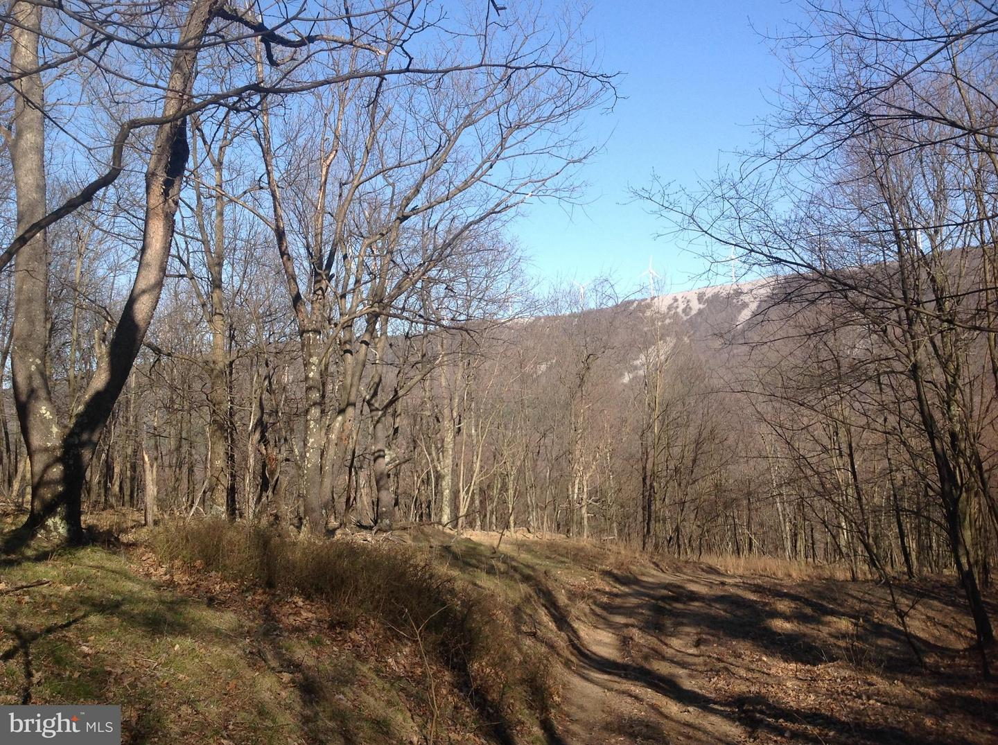 Land for Sale at 63 Sit Back Rd. Off 93 East Mount Storm, West Virginia 26739 United States