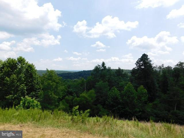 Land for Sale at 0 Rt 50 Capon Bridge, West Virginia 26711 United States