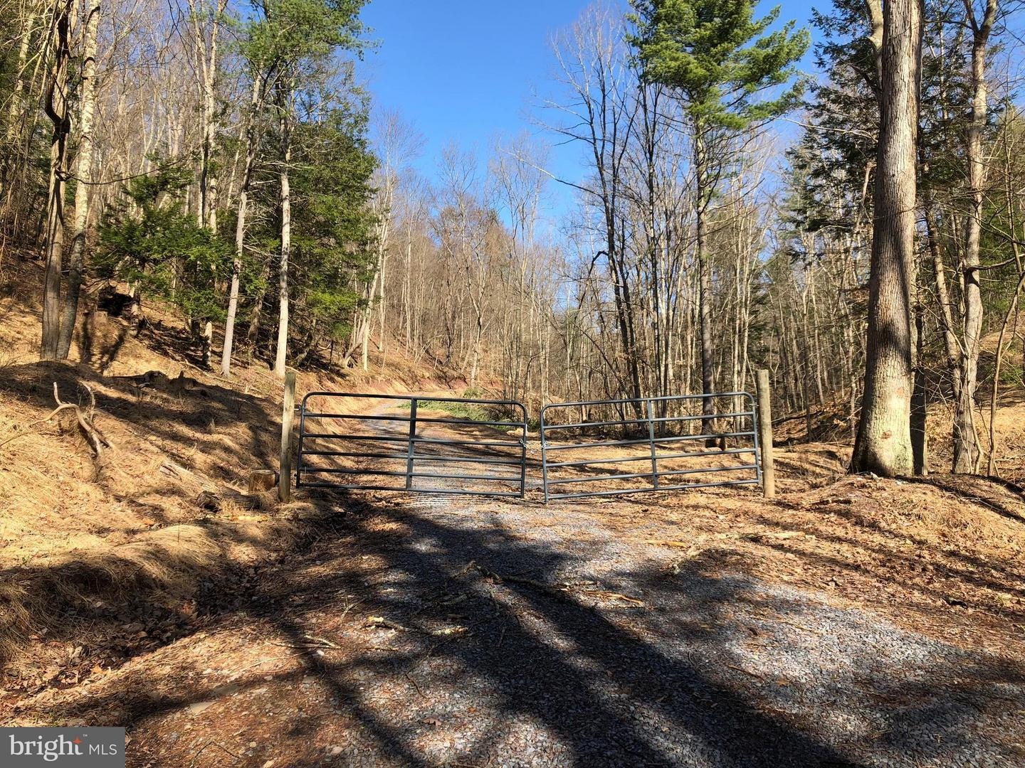 Land for Sale at Lot 10 Polecat Hollow Road Hopewell, Pennsylvania 16650 United States