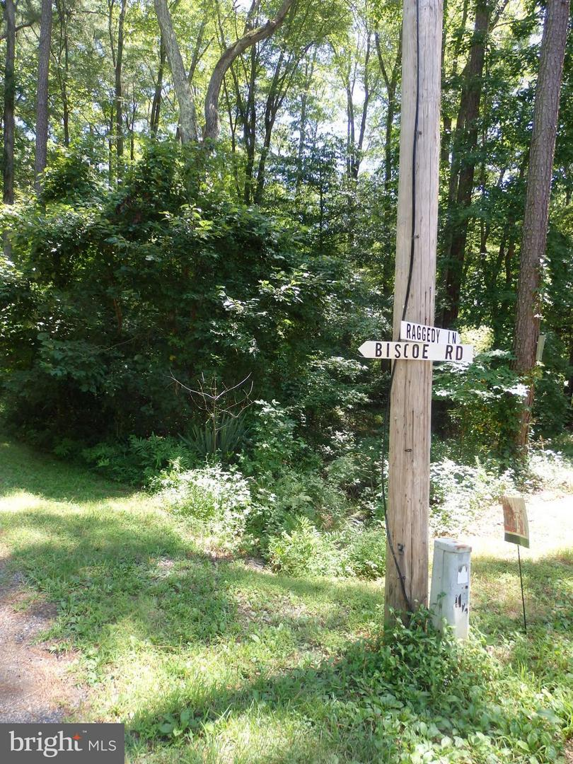 Land for Sale at Flat Iron Rd Great Mills, Maryland 20634 United States