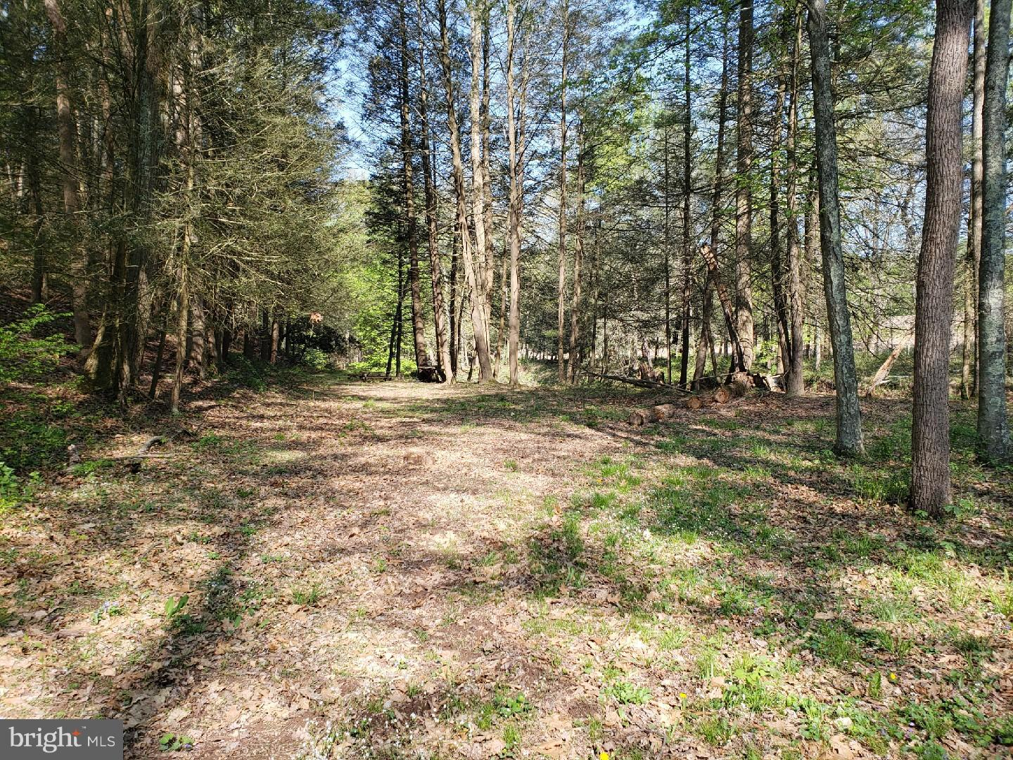 Land for Sale at N Foster Road Needmore, Pennsylvania 17238 United States