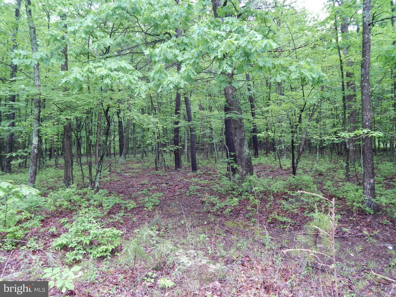 Land for Sale at Lot 1 Alex Lane Berkeley Springs, West Virginia 25411 United States