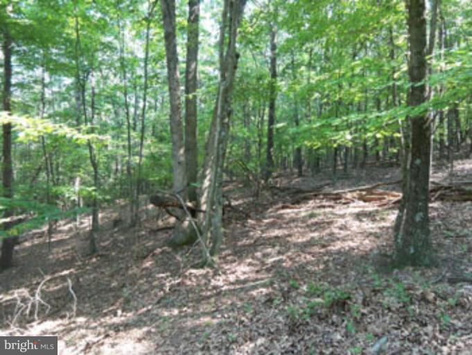 Land for Sale at Posey Hollow Road Berkeley Springs, West Virginia 25411 United States