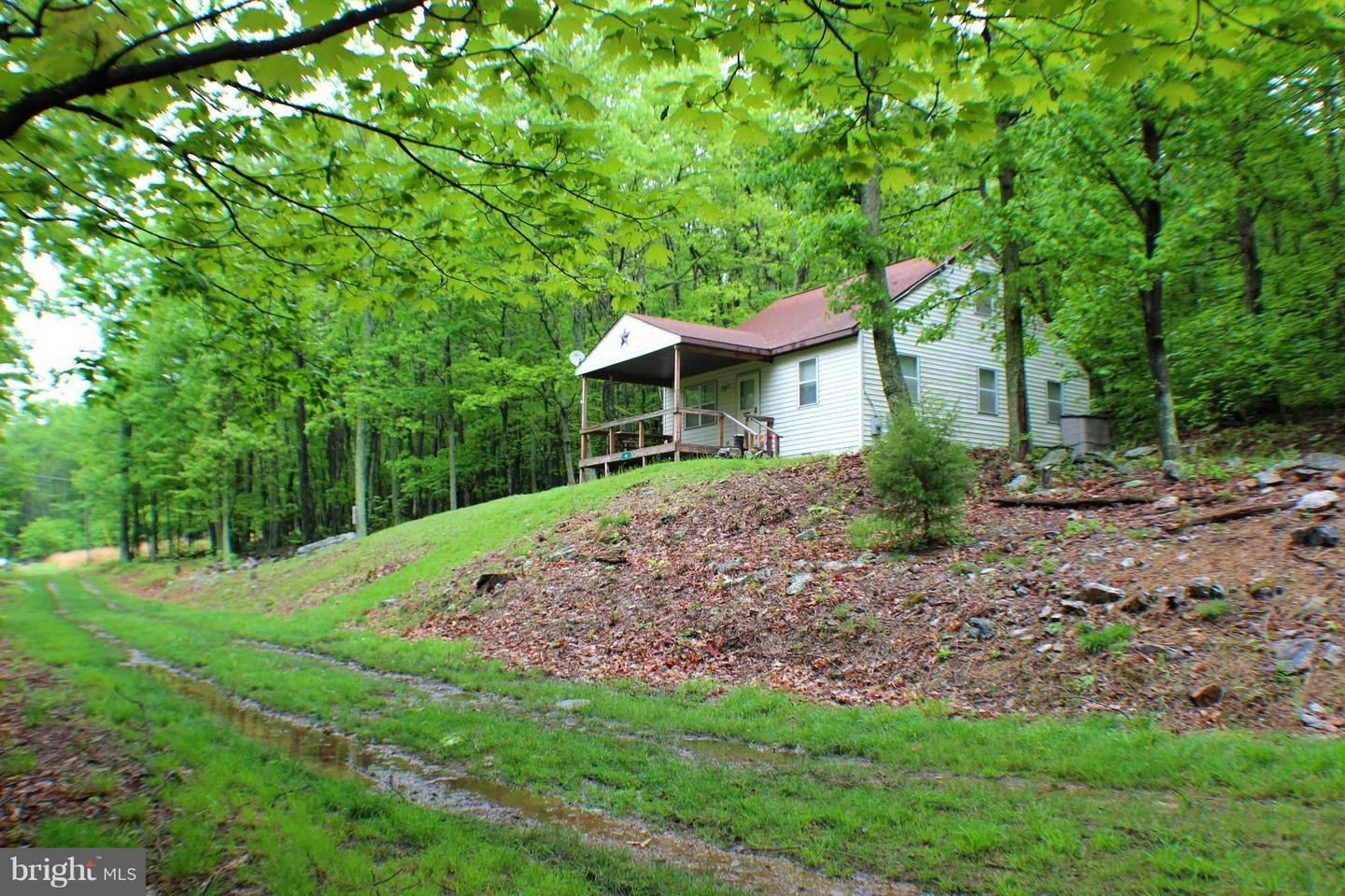 Single Family for Sale at 41 Lynx Dr Maysville, West Virginia 26833 United States