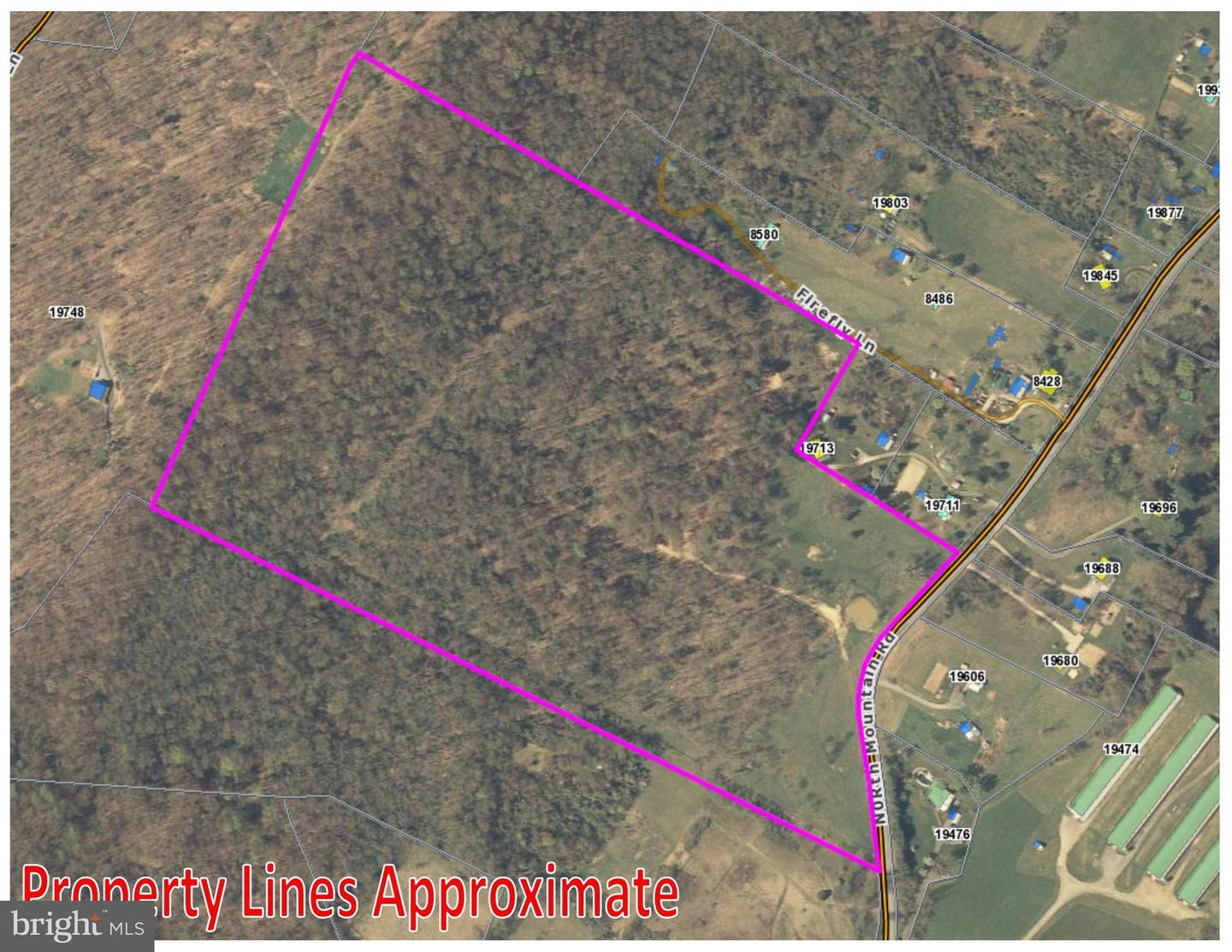 Land for Sale at 0 North Mountain Rd Timberville, Virginia 22853 United States