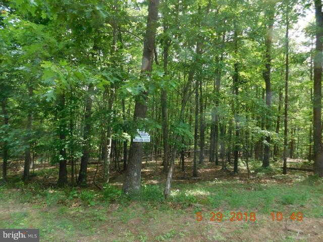Land for Sale at Lot 2b Hollybush Ln Berkeley Springs, West Virginia 25411 United States